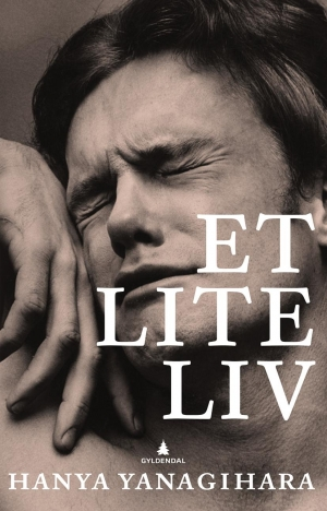 Hanya Yanagihara: ET LITE LIV