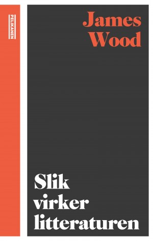James Wood: SLIK VIRKER LITTERATUREN